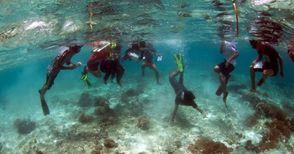 Volunteers and locals working with LINI Foundation in Bali for marine conservation